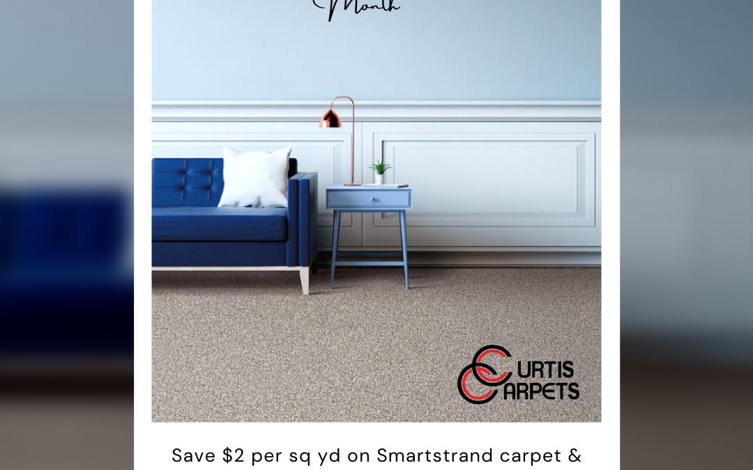 It's National Karastan Month at Curtis Carpets